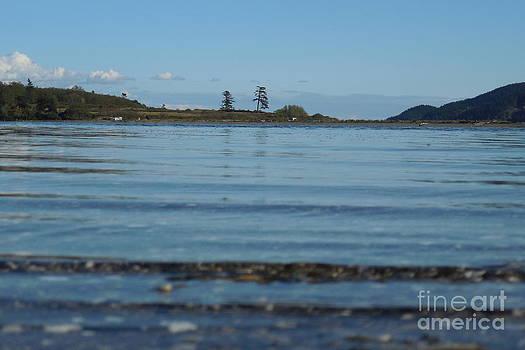 Wading To Portage Isle by A Cyaltsa Finkbonner