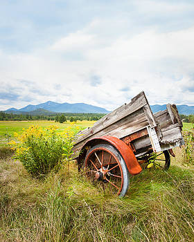 Wagon and Wildflowers - Vertical Composition by Gary Heller
