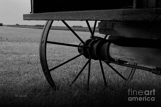 Wagon Wheel by E B Schmidt