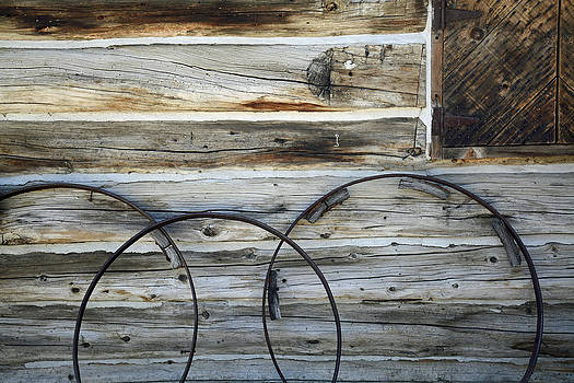 Wagon Wheel Rims Near Parson's Memorial in Yosemite by Bruce Gourley