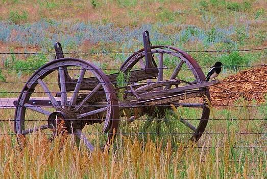 Joy Bradley - Wagon  Wheels