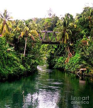 Jason Sentuf - Waigo River