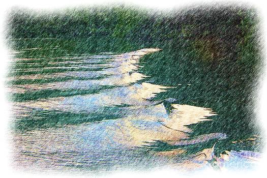 Charles Davis - Wailau Riverscapes 1