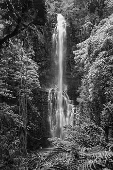 Bob Phillips - Wailua Falls 2