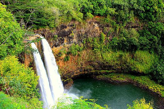Wailua Falls  by Sherry Hudson