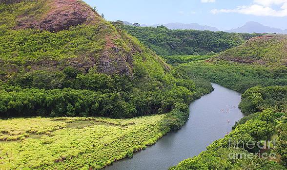 Wailua River  by Tabatha Knox