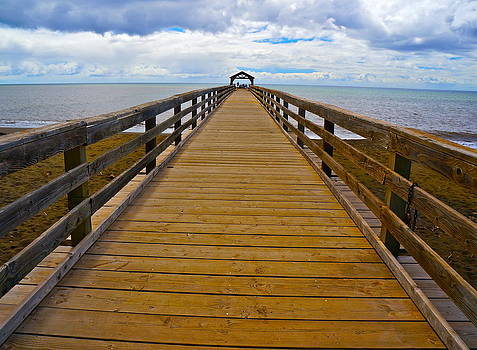Waimea Pier by Tracey McQuain