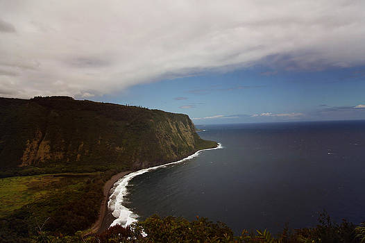 Waipi'o Valley Overlook by Lori Peterson