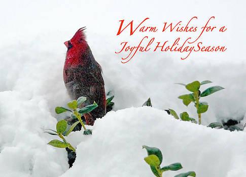 Waiting for Santa by Deborah Willard