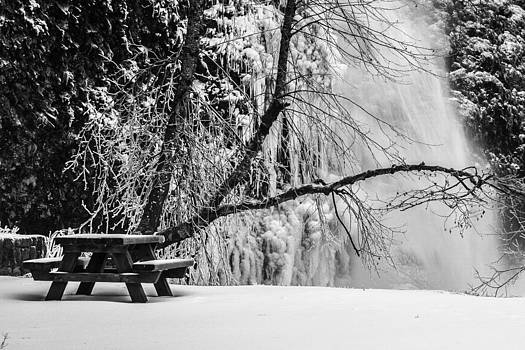 Waiting for Spring by Curtis Knight