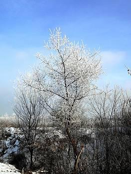 Yuriy Vekshinskiy - Waiting for spring