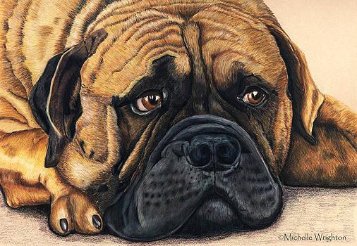 Michelle Wrighton - Waiting Bullmastiff Drawing