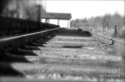 Walk along the tracks by Tina Hannaford