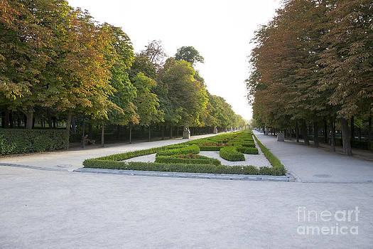 Walk avenue  by Stefano Piccini