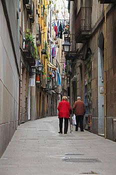 Walk Down Memory Lane by Srikanth Srinivasan