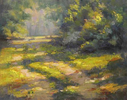 Walk in the Light by Cristine Sundquist