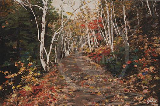 Walk in the Woods by Gail Fischer
