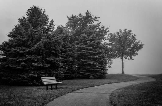 Ray Van Gundy - Walk into the Fog