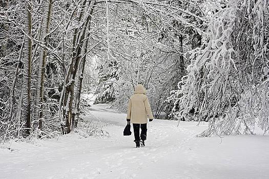 Walk into Winter by Allan MacDonald