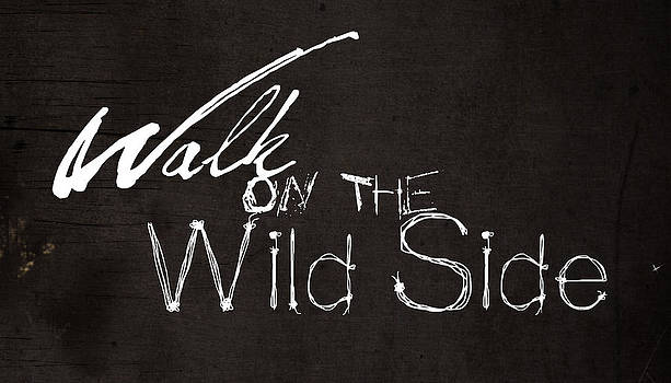 Walk On The Wild Side by Stephen Walker