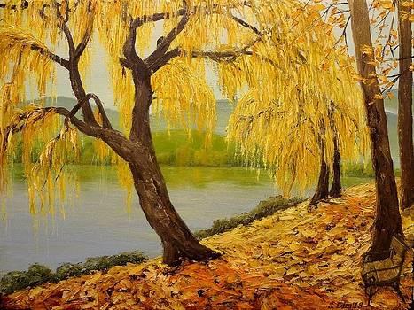 Walk the river by Svetla Dimitrova