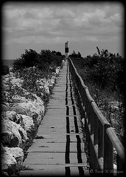 Walk to the light by Terri K Designs