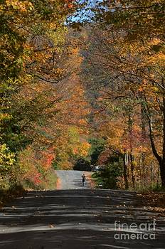 Walking A Country Road by Kathleen Struckle
