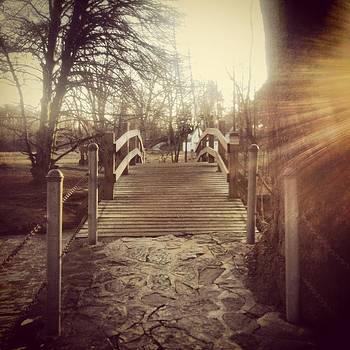 Walking Bridge by Christian Rooney