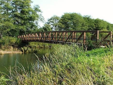 Walking Bridge by Gary Rathjen