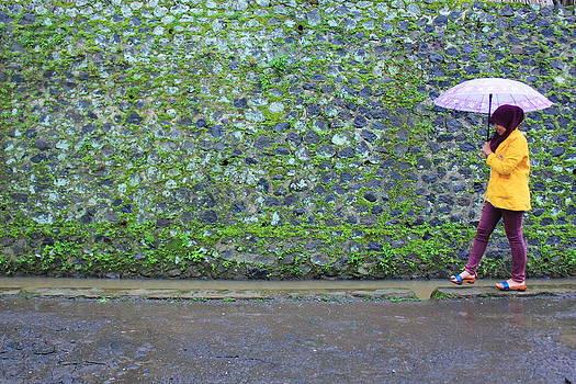Walking In The Rain by Menuk