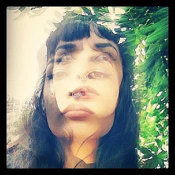 Walking. #self #walkinginla #trees by Melissa Eve