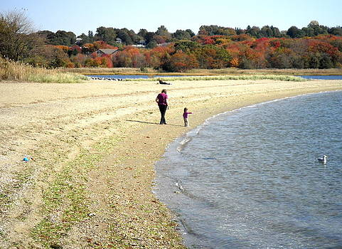 Kate Gallagher - Walking the Beach in October