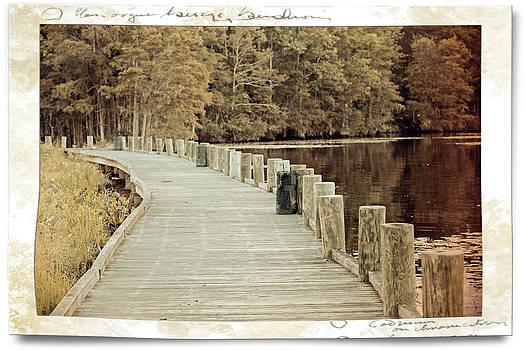 Walkway by Carolyn Ricks