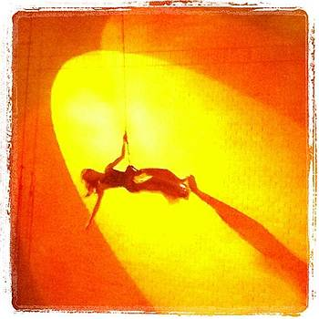 Wall Acrobat 120912 by Lynda Harrison