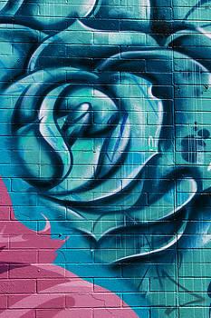 Guy Shultz - Wall Flower 1