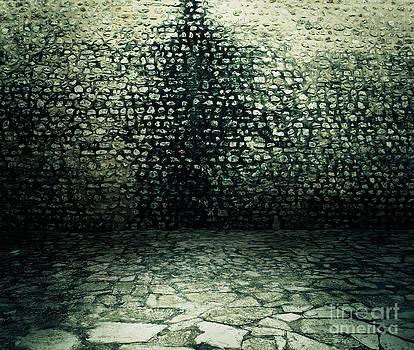 Mythja  Photography - wall