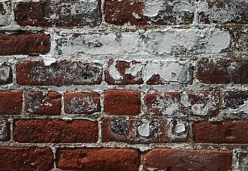 Robin Mahboeb - wall