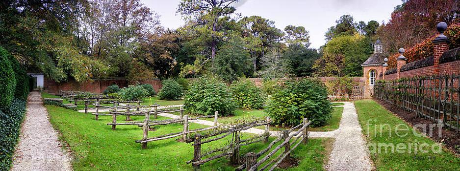Shari Nees - Walled Garden
