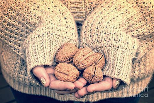Delphimages Photo Creations - Wallnuts