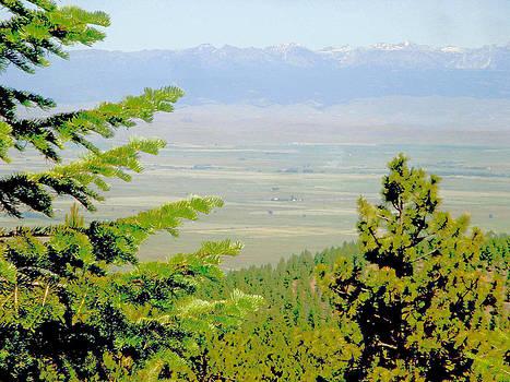 Wallowa Mountains by Bill Talich