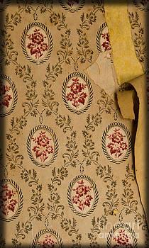 Liz  Alderdice - Wallpaper