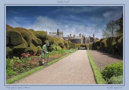 Stephen Barrie - Walmer Castle Garden