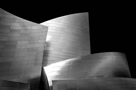 Walt Disney Concert Hall 1 by Az Jackson