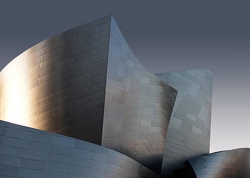 Walt Disney Concert Hall  by Pavel Bendov