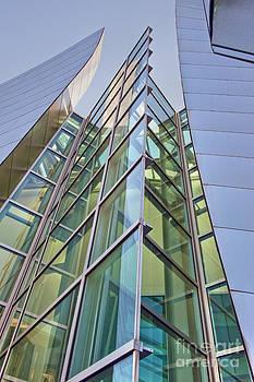 David Zanzinger - Walt Disney Concert Hall Vertical Exterior Building Frank Gehry Architect 5