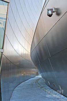 David Zanzinger - Walt Disney Concert Hall Vertical Exterior Building Frank Gehry Architect 7