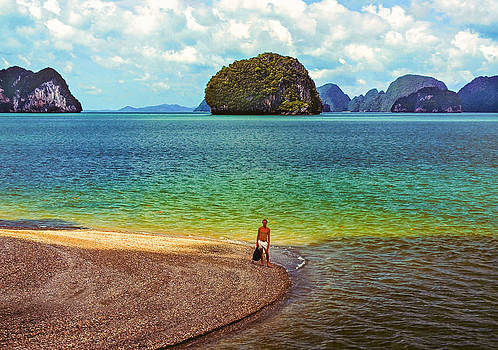 Steve Harrington - Wandering in Paradise