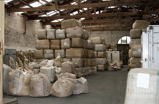 Patricia Hofmeester - Warehouse full of wool
