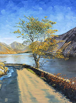 Wasdale Autumn by Mick Wren