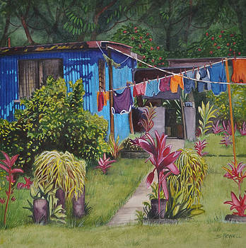 Wash Day by Sandi Howell